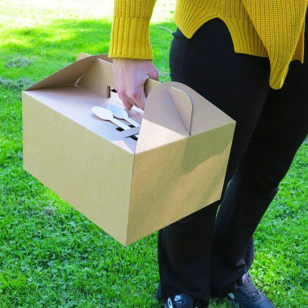 Cardboard carrying box